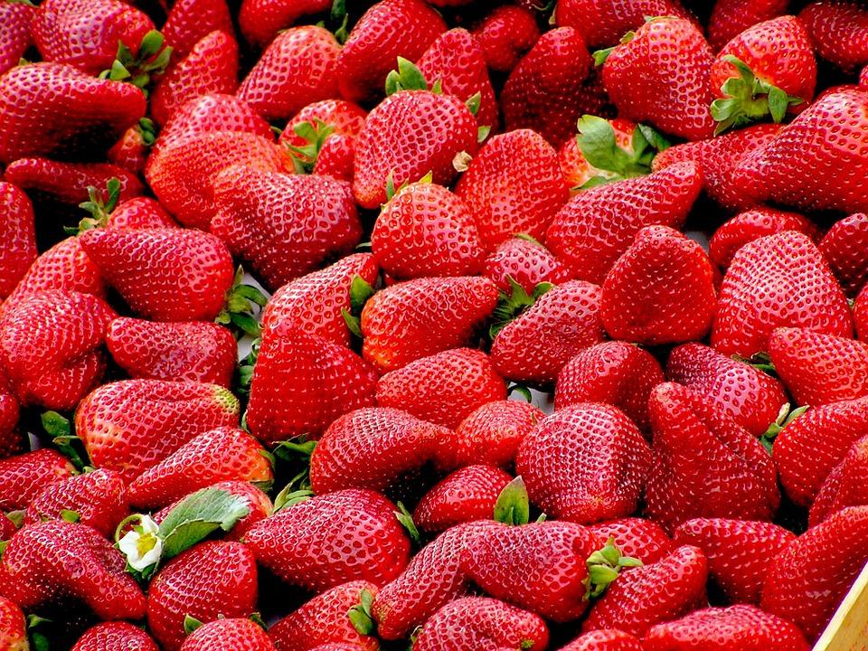 zralé jahody